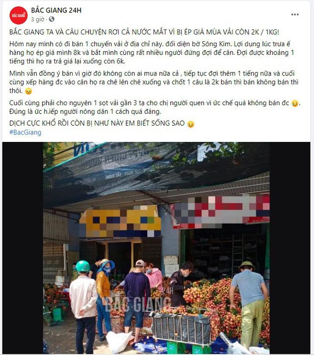 'Không có chuyện vải Bắc Giang bị ép giá 2.000 đồng/kg'