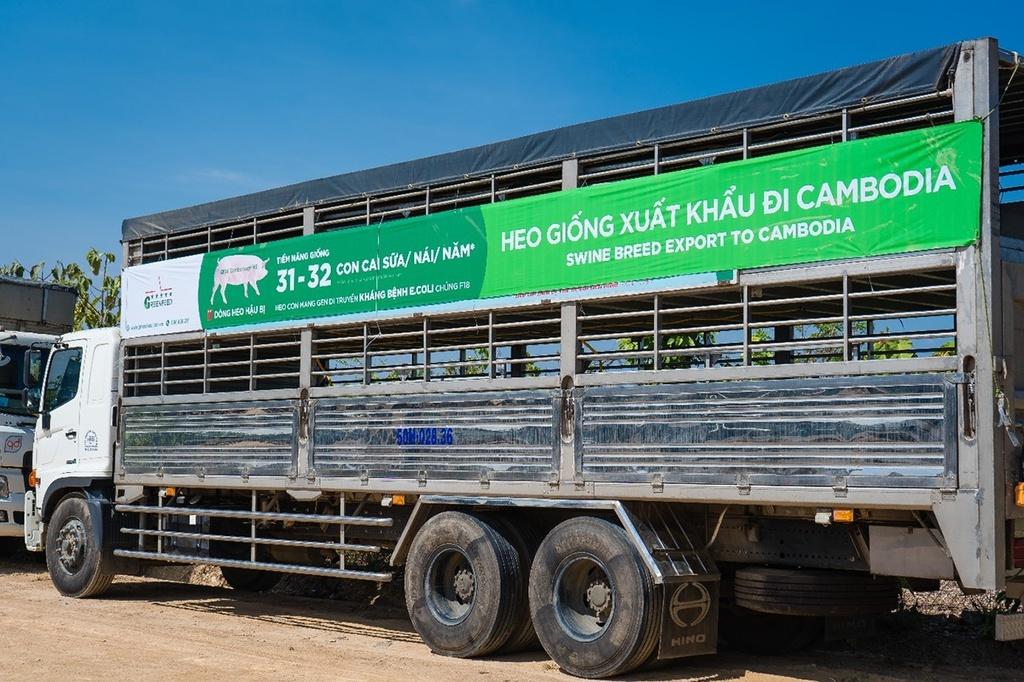 GREENFEED Việt Nam xuất khẩu thành công heo giống tiêu chuẩn quốc tế ra khu vực