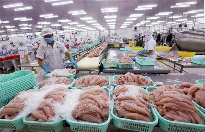 ADB đánh giá kinh tế Việt Nam tăng trưởng mạnh nhờ kiểm soát thành công Covid-19