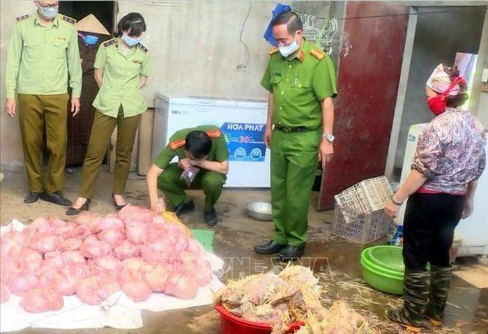 Kịp thời ngăn chặn hơn 3 tấn gà hôi thối chuẩn bị đưa ra thị trường