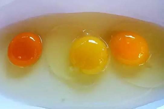 Lòng đỏ trứng gà màu đậm hay nhạt tốt cho sức khỏe hơn?