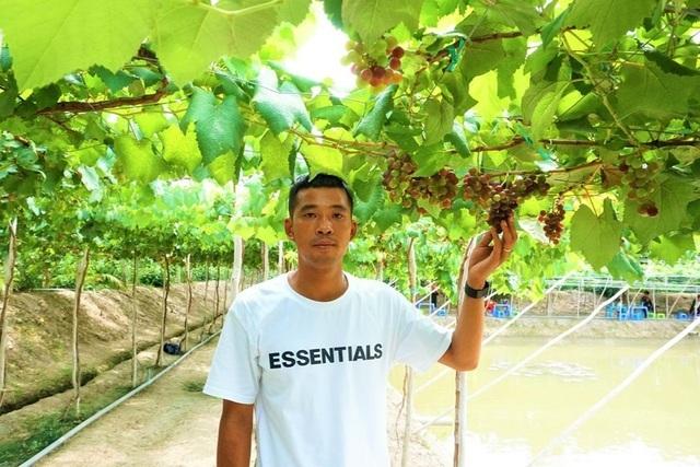 Chàng trai hô biến đất lúa thành vườn nho trĩu quả mê hoặc du khách