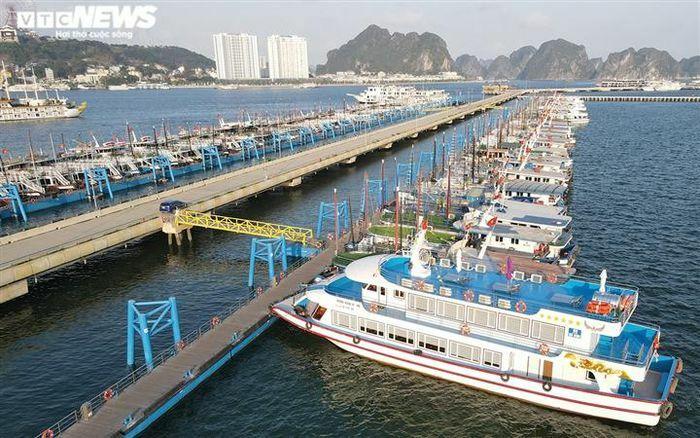 500 tàu du lịch Hạ Long nằm ''chờ chết'', bán không ai mua - ảnh 1
