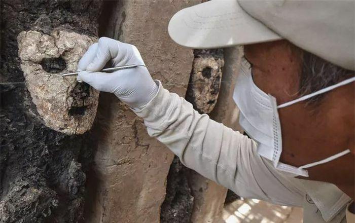 19 bức tượng bị chôn vùi và lãng quên hé lộ bí mật hơn 750 năm trước - ảnh 1