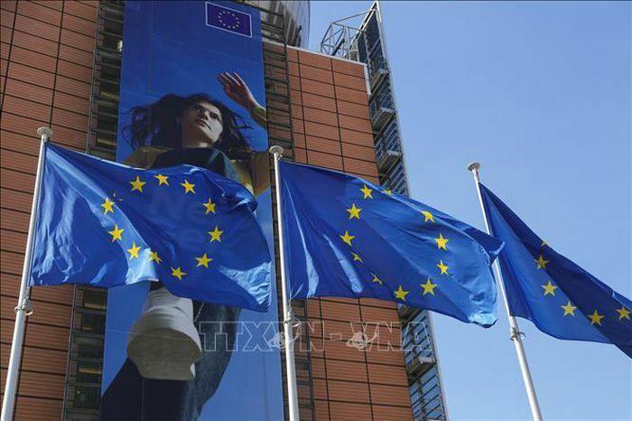 Nghị viện châu Âu chuẩn bị khởi kiện EC - ảnh 1