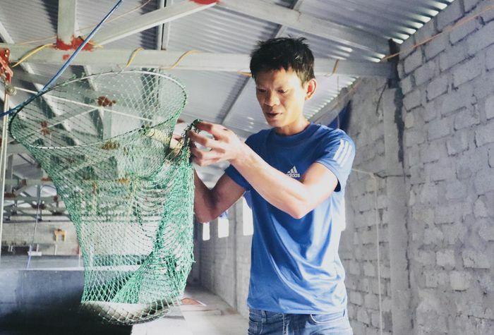 Quảng Bình: Nuôi loài cá ''ngày ngủ đêm ăn, ít bệnh, dễ nuôi'' có mấy tháng đã thu cả tỷ đồng - ảnh 1