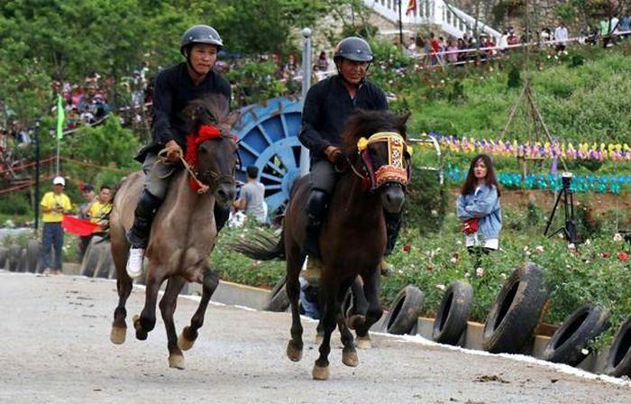 Bảo tồn những nét đặc sắc của di sản văn hóa Lễ hội đua ngựa Bắc Hà - ảnh 1