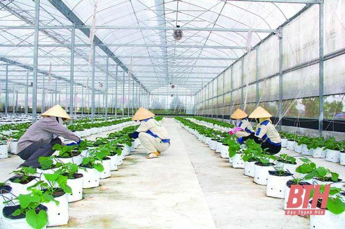 Phát triển nông nghiệp toàn diện, đa sản phẩm - ảnh 1