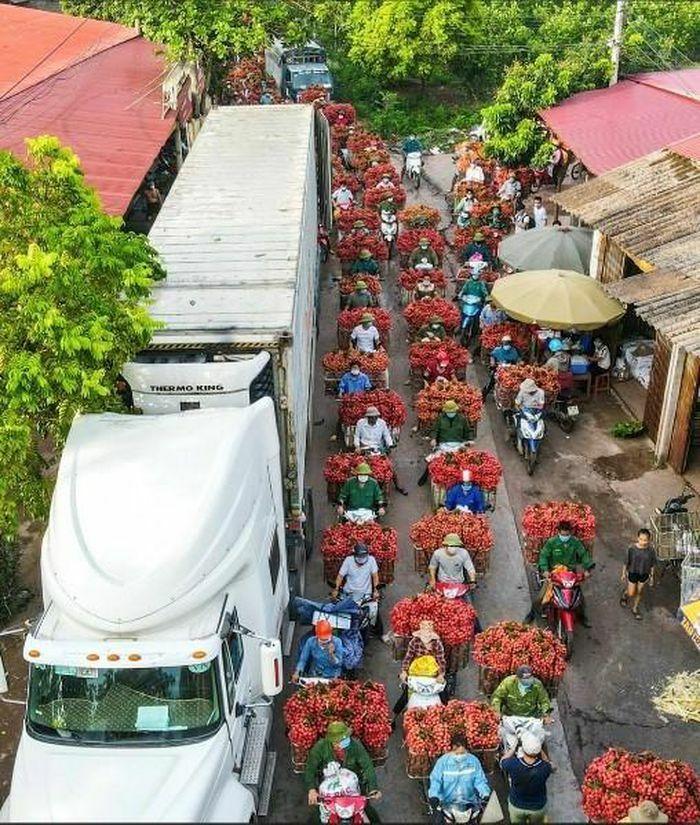 Cục Quản lý thị trường An Giang hỗ trợ tiêu thụ 40 tấn vải thiều Bắc Giang, 14 tấn khoai và hành tím - ảnh 1