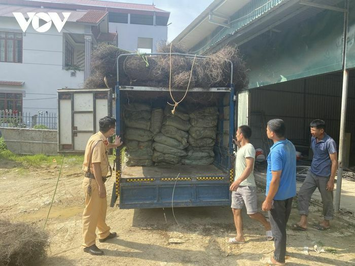 Phát hiện xe tải chở hơn 2 tấn nguyên liệu thuốc lá không rõ nguồn gốc - ảnh 1
