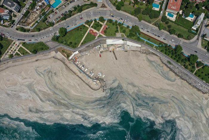 Hình ảnh ''thảm họa'' chất nhầy bùng phát tại bờ biển Thổ Nhĩ Kỳ - ảnh 1