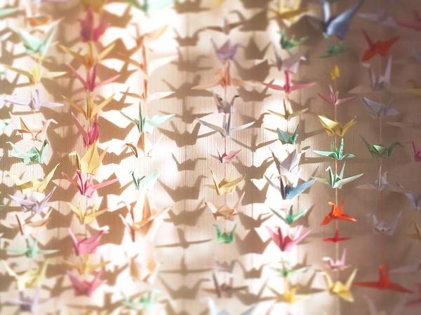7 biểu tượng chim trong phong thuỷ và ý nghĩa mà không phải ai cũng biết - ảnh 1
