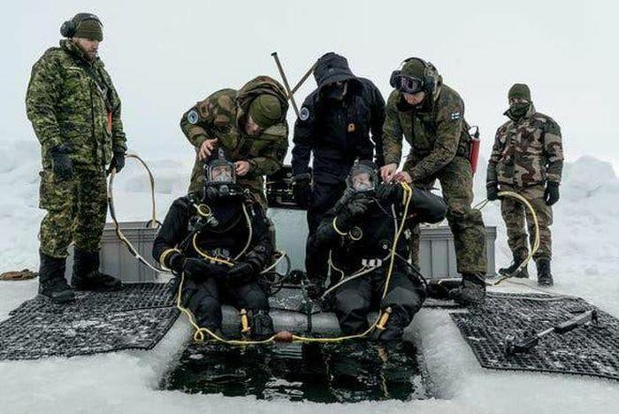 Nga quan ngại cuộc tập trận của NATO tại Bắc Cực - ảnh 1