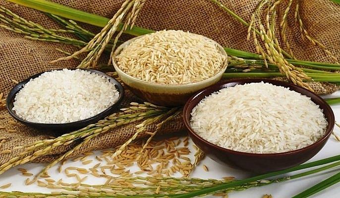 Giá lúa gạo hôm nay 12/6: Giá lúa ổn định, giá gạo nguyên liệu tăng - ảnh 1