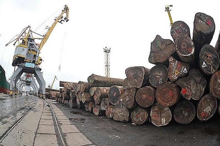 Thực thi Nghị định về gỗ hợp pháp nhập khẩu: Vẫn còn khoảng trống - ảnh 1
