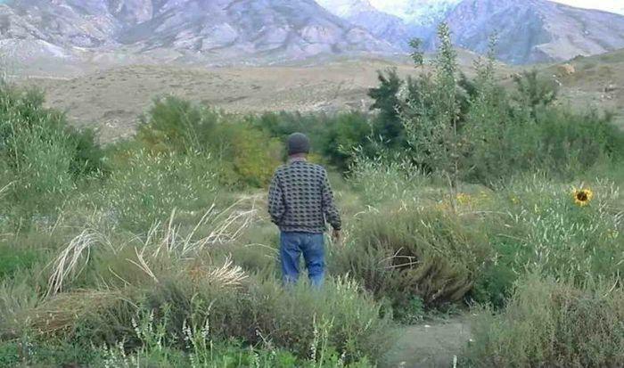 Người đàn ông sống giữa sa mạc suốt 20 năm để tạo ra ''điều kỳ diệu'' - ảnh 1