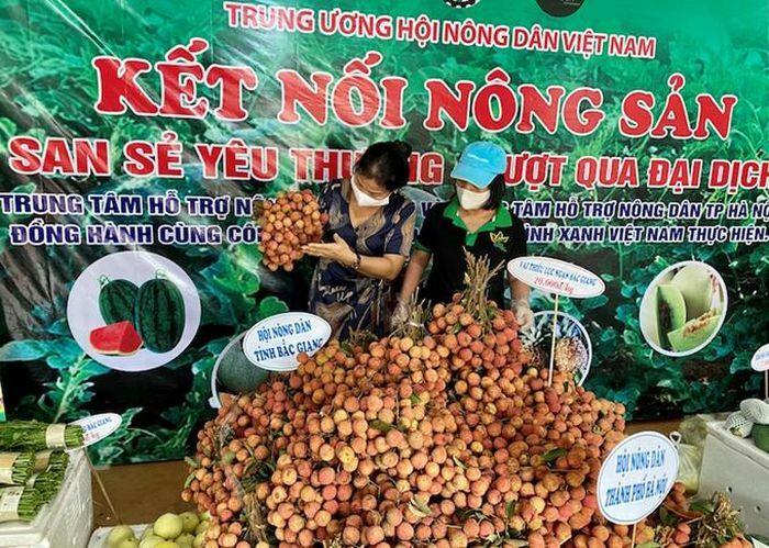 Mở điểm kết nối tiêu thụ nông sản giữa trung tâm Thủ đô - ảnh 1