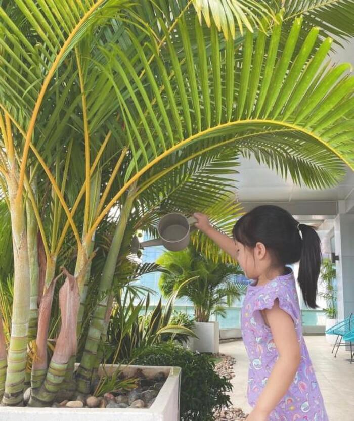 Hoa hậu Đặng Thu Thảo khoe ảnh con gái giúp mẹ tưới cây, ra dáng chị cả trong gia đình - ảnh 1