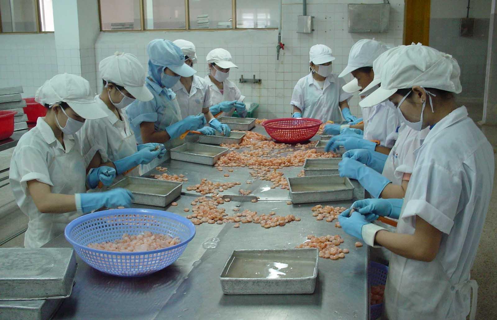 Tiền Giang: Chú trọng xây dựng chuỗi cung ứng thực phẩm an toàn - ảnh 1