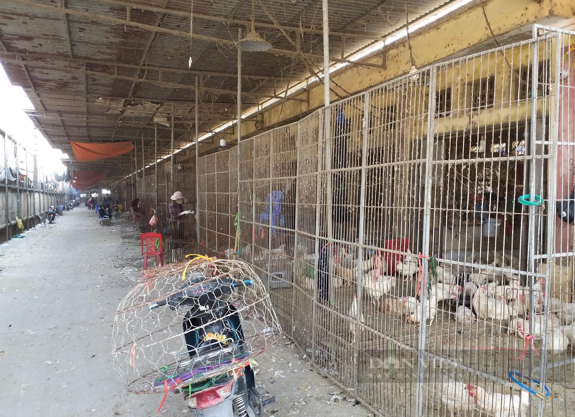 Giá gia cầm hôm nay 24/7: Cập nhật giá gà, vịt tại chợ đầu mối gia cầm lớn nhất miền Bắc - ảnh 1