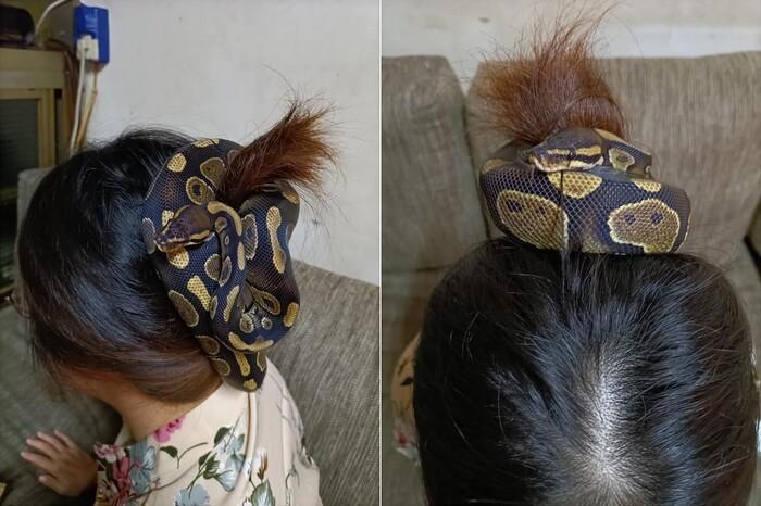 """Dùng rắn làm dây buộc tóc, người phụ nữ khiến dân mạng sợ khiếp vía: """"Nhìn thôi đã tê hết da đầu rồi"""""""