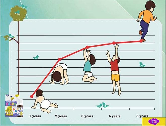 Lý do mẹ nên chọn LineaBon hỗ trợ tăng chiều cao cho trẻ - ảnh 1