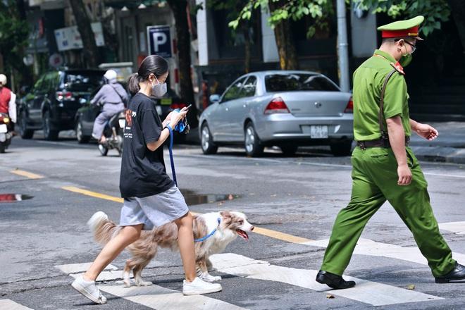 Dắt chó đi dạo khi Hà Nội giãn cách xã hội, cô gái trẻ bị phạt 2 triệu đồng - ảnh 1
