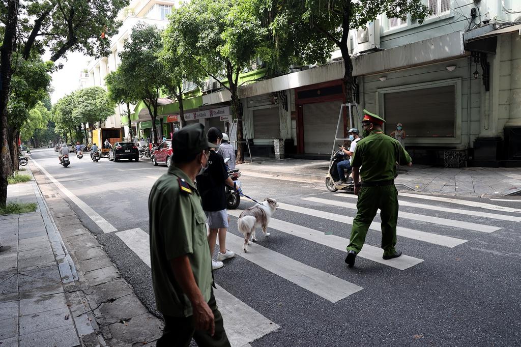 Hà Nội: Dắt chó đi vệ sinh, cô gái trẻ bị phạt 2 triệu đồng - ảnh 1