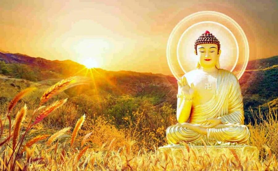 Nếu đang phiền muộn, hãy đọc 5 lời dạy của Phật lấy lại năng lượng - ảnh 1