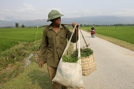 Câu chuyện cuộc đời con trai một người lính Pháp ở Điện Biên
