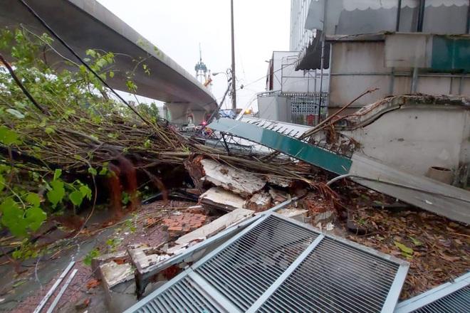 TPHCM: Cây xanh đổ đè người đi đường trong cơn mưa - ảnh 1