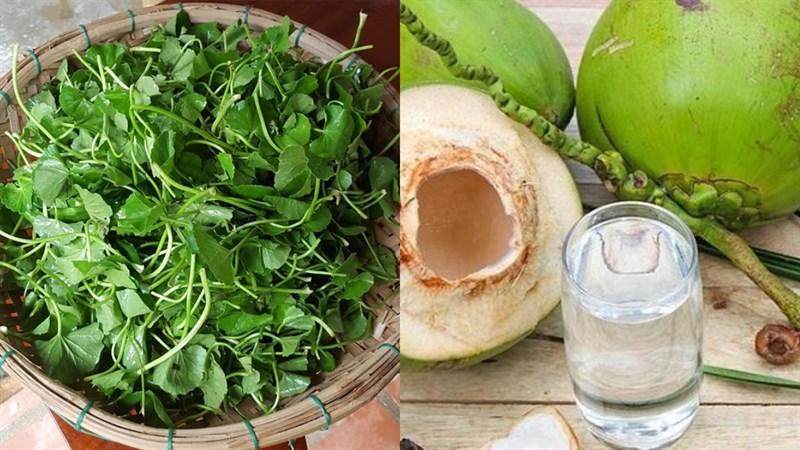 Cách làm rau má nước dừa mát lạnh, giải nhiệt cơ thể cực đơn giản