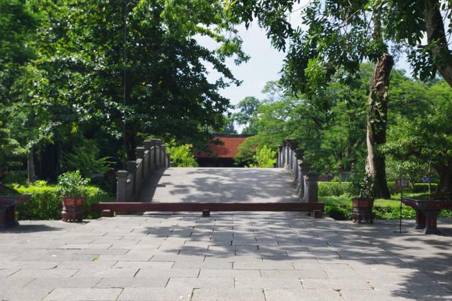 Chuyện kỳ bí về 'cây lim hoá thân' và 'cây ổi cười' ở đất thiêng Lam Kinh - ảnh 1