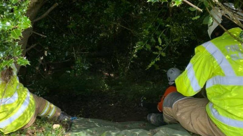 Người phụ nữ được cứu sống ở Anh nhờ tiếng mèo kêu