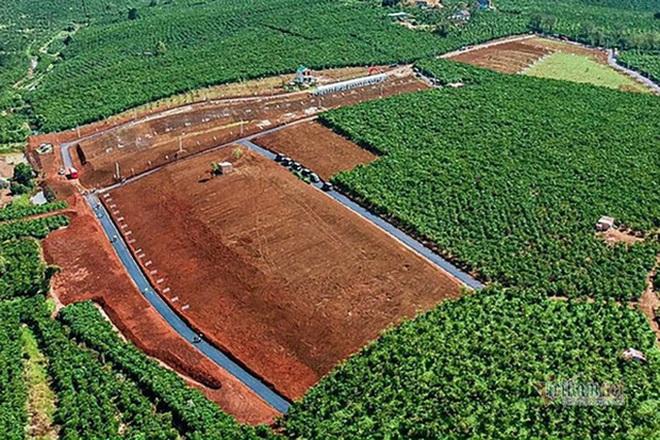 Mua một quả đồi rồi tách bán 2.000 lô đất mà không cần lập dự án đầu tư