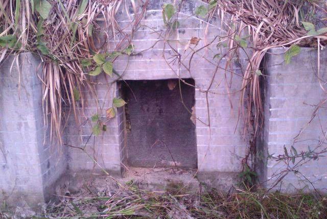"""Khai quật mộ cổ 500 năm của nhà sư: Không có bóng dáng báu vật nhưng đặc biệt xuất hiện hai con """"quái thú"""" còn sống!"""