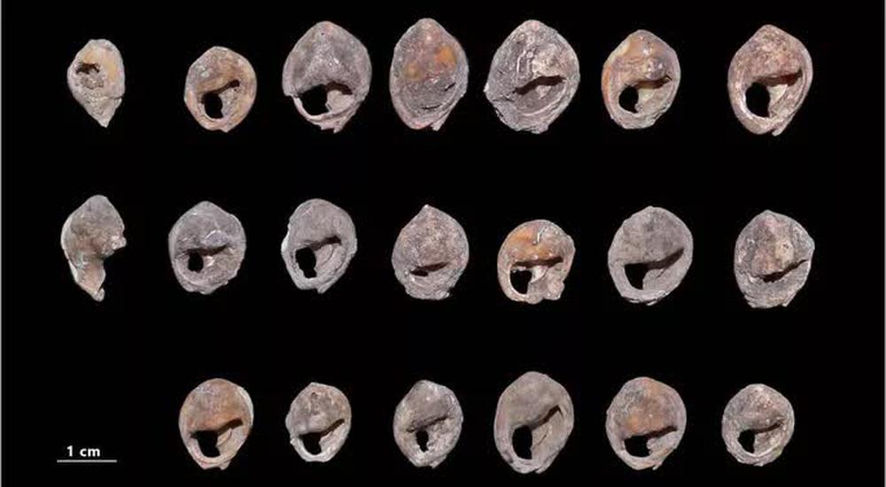 Choáng váng kho trang sức cổ xưa nhất thế giới: 150.000 tuổi