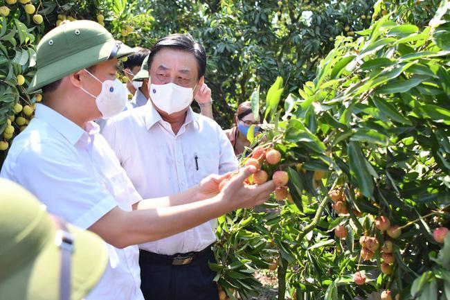 """Cấp """"căn cước công dân"""" cho cây trồng, vật nuôi (bài 3): Có tên, nông sản Việt băng băng bay Âu – Mỹ"""