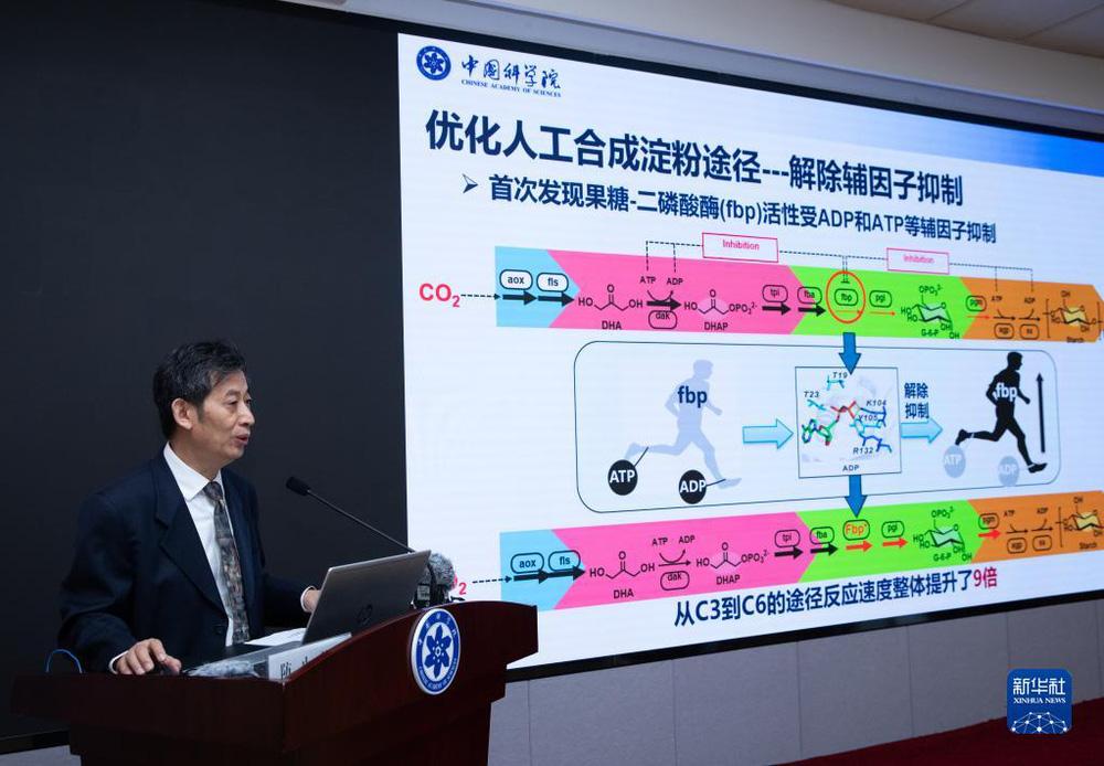 Trung Quốc có bước đột phá trong tổng hợp tinh bột nhân tạo: Lò phản ứng 1 mét khối tương đương 5 sào đất trồng ngô