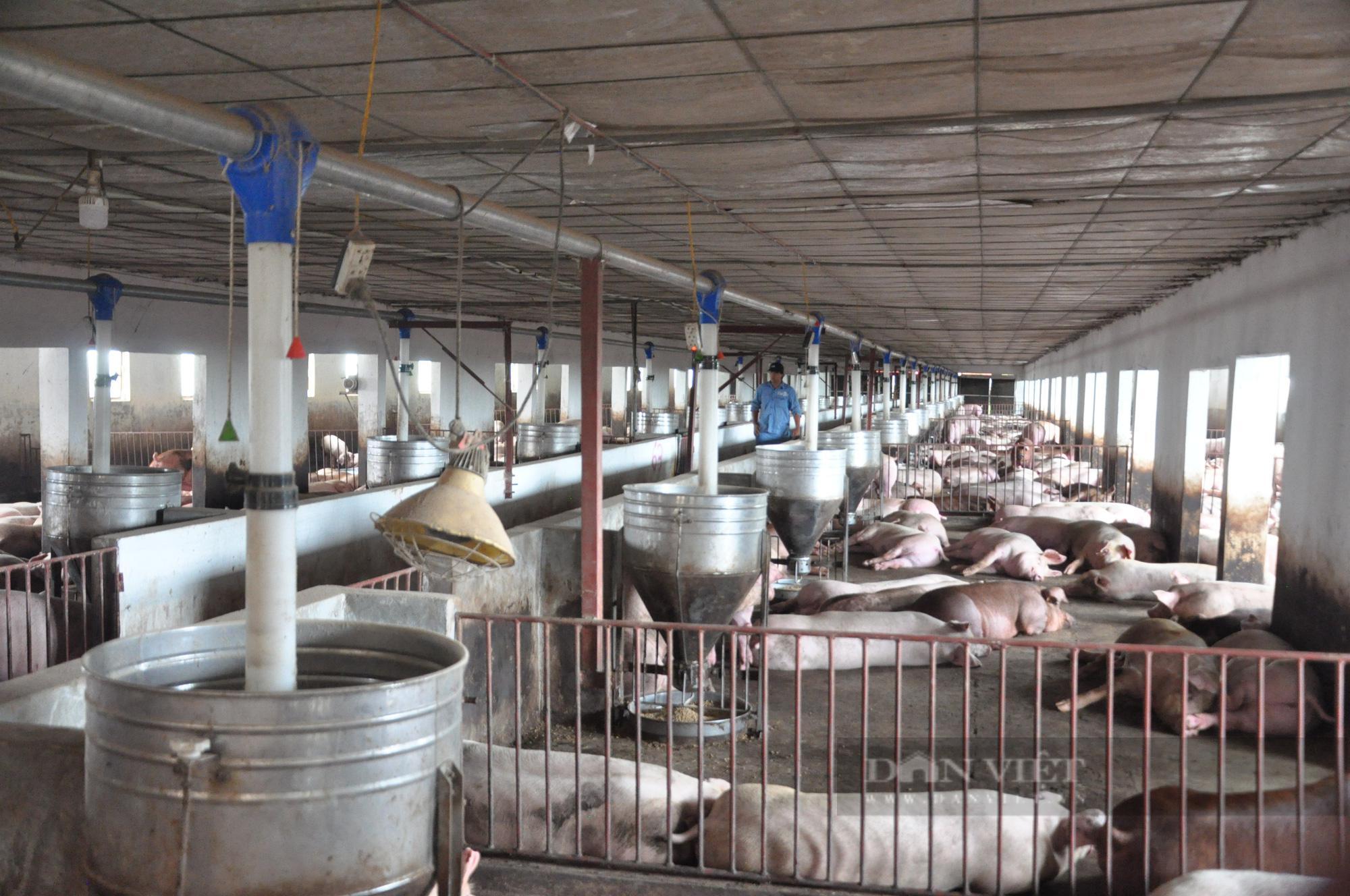 Khôi phục sản xuất nông nghiệp sau dịch: Trăm mối tơ vò