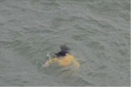 Vội vàng lao xuống sông cứu cô gái đuối nước, ông lão đột nhiên bỏ mặc nạn nhân vì lý do bất ngờ - ảnh 1