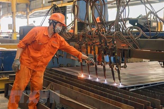 230.000 công nhân ở các khu công nghiệp TP.HCM đã trở lại làm việc
