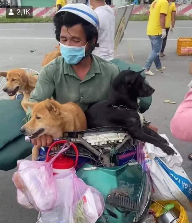 BS Trương Hữu Khanh: Virus gây Covid-19 trên người và động vật là hoàn toàn khác nhau - ảnh 1