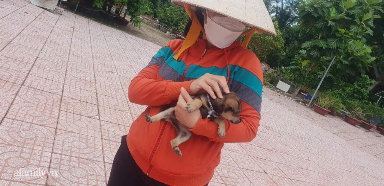 Độc quyền: Cô chủ mới tiết lộ tình trạng hiện tại của bé cún duy nhất còn sống trong đàn 15 con bị tiêu hủy ở Cà Mau và cảm xúc khó tả khi