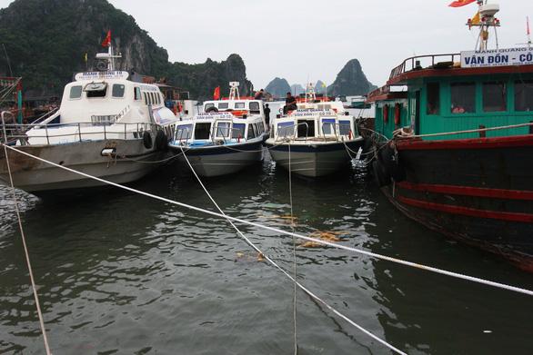 Nhiều địa phương Đông Bắc Bộ cấm biển, tăng cường ứng phó bão số 7