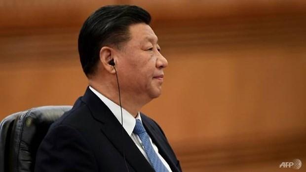 Chủ tịch Trung Quốc gửi điện chia buồn về vụ rơi máy bay ở Nga - ảnh 1