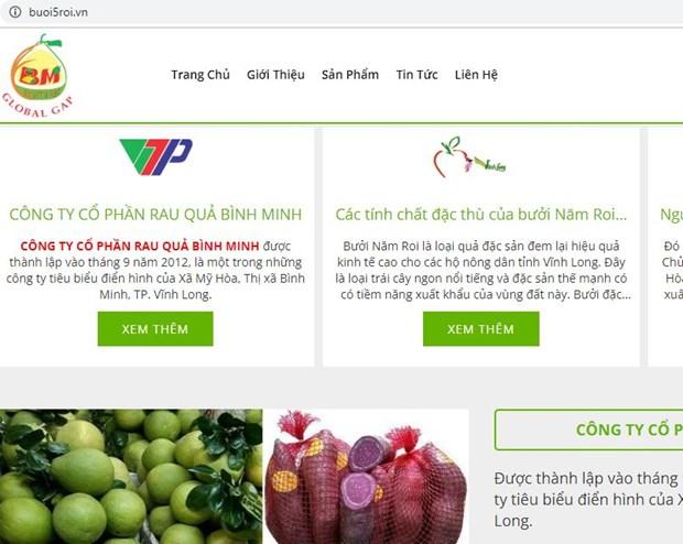 Nông sản Vĩnh Long lên sàn thương mại điện tử với tên miền ''.vn'' - ảnh 1