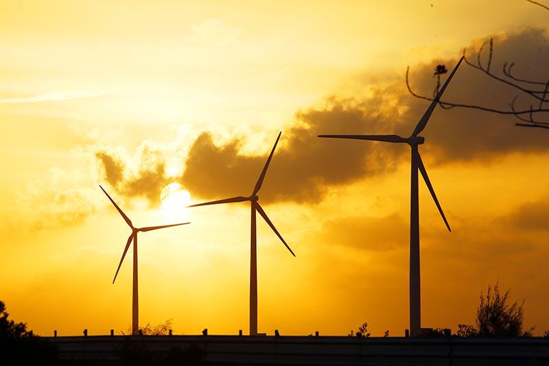 Nhà đầu tư điện gió có nguy cơ trắng tay